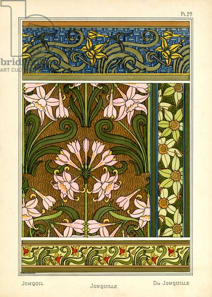 The Jonquil (colour litho)