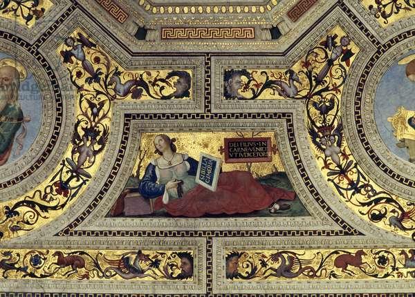 Vault of the Presbytery with the Cimmerian Sybil, Santa Maria del Popolo, Rome, c.1484-92 (fresco)