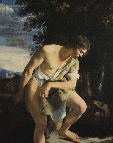 David (oil on canvas)