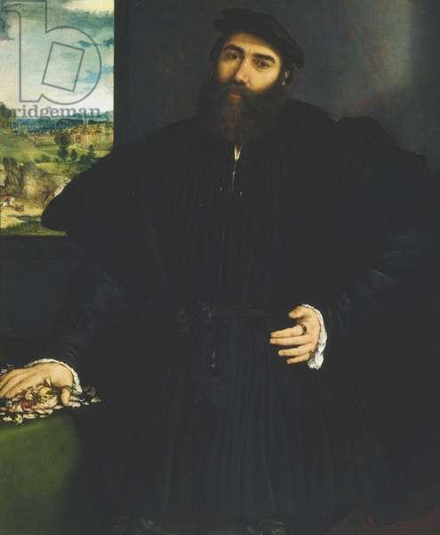 Portrait of a Gentleman, c.1530 (oil on canvas)