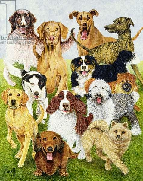 Dog Days (oil on canvas)