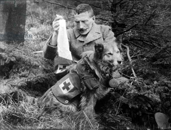 Getting bandages from kit of British Dog ww1