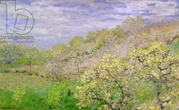 Trees in Blossom