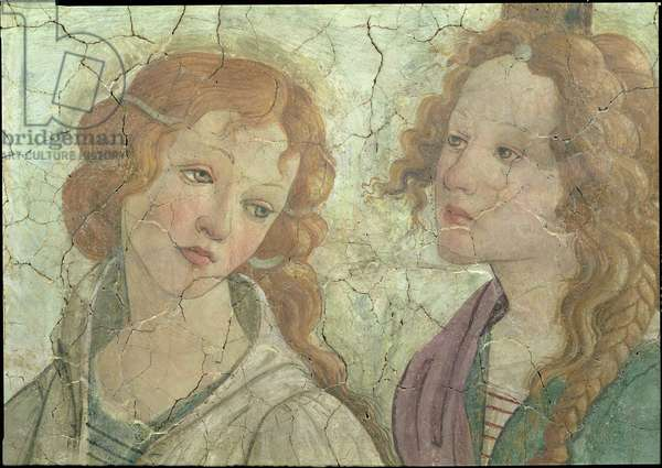 Venus and the three Graces Offering Gifts to a Young Girl, detail of one the graces, c.1483 (fresco) (detail from 33760) (see also 93891-3)
