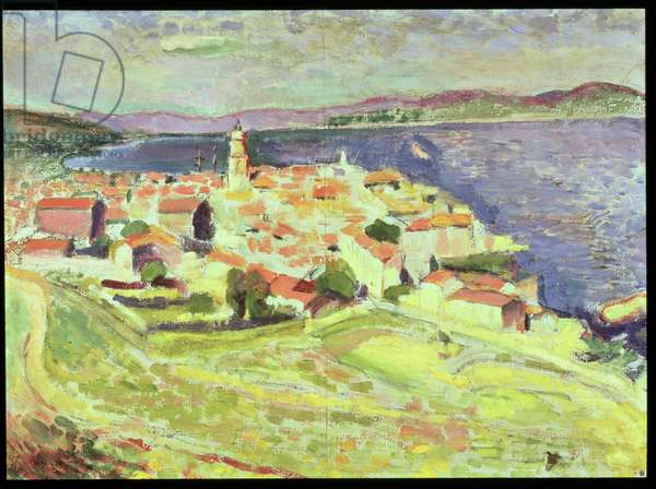 View of St. Tropez, 1901 (oil on canvas)