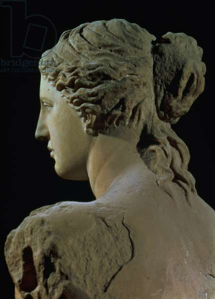 Venus de Milo, detail of the back of the head, Hellenistic period, c.100 BC (marble) (for front view see 14152)