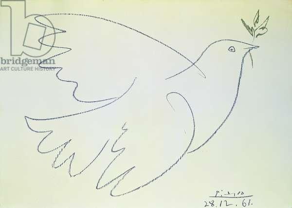 Dove, 1961 (pastel on paper)