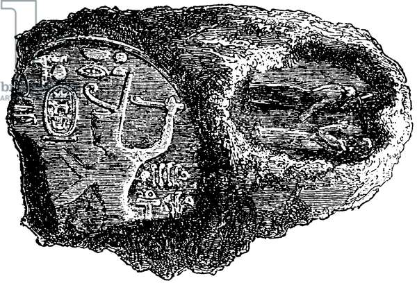 Imprint of the seal of Shabaka and the king of Assyria on a pottery shard from Kuyunjik (full-size)