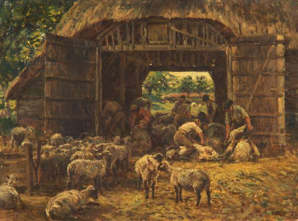Sheep Shearing, 1892 (oil on canvas)