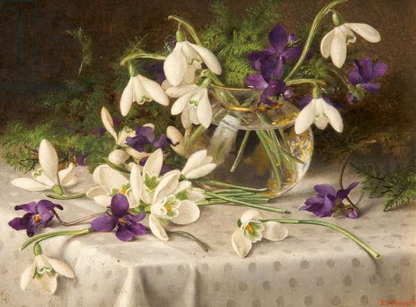 Snowdrops and Violets, 1903 (oil on canvas)