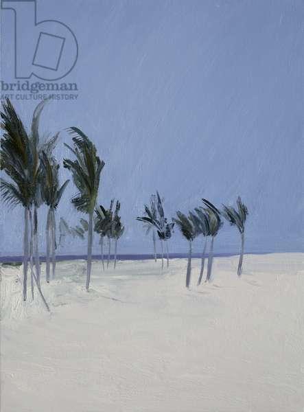 Cable Beach, 2008 (oil on canvas)