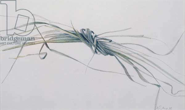 A Knot of Grass, 1995 (w/c over pencil on paper)