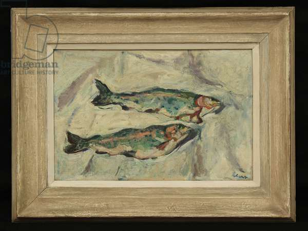 Trout, c.1950s (oil on canvas)