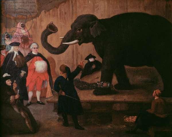 An Elephant Shown in Venice (oil on canvas)