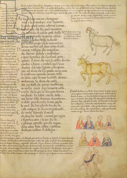 Ms Italien 87 fol.171 Page illustrating astrological signs, from 'De Civitate Dei, San Agostino' (vellum)