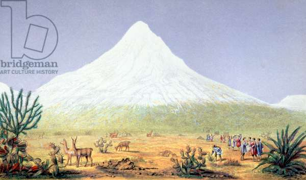 T.1607 Chimborazo, from 'Views of Nature', pub. c.1850 (Baxter's patent oil colour print)