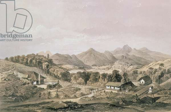 T1235 Peacock Hill, Coffee Estate with Gampola in the distance, Ceylon, 1864 (litho)