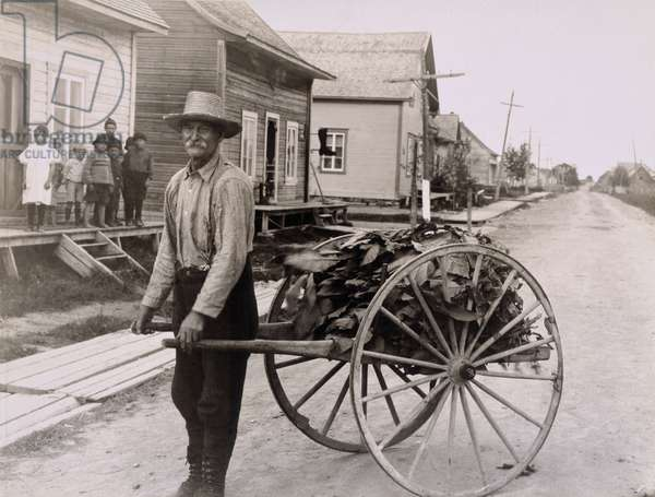 A French-Canadian with a cart carrying tobacco, 1920 (b/w photo)