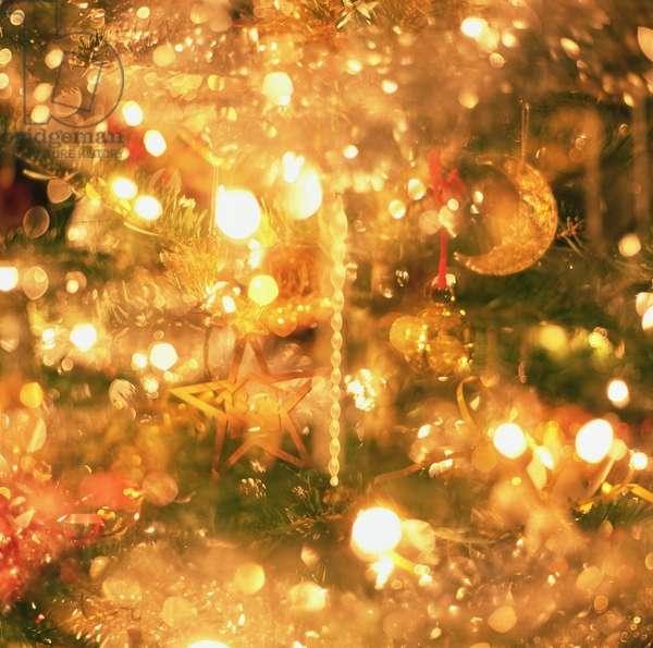 Christmas Lights (photo)