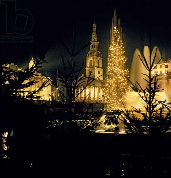 Christmas tree in Trafalgar Square at night (photo)