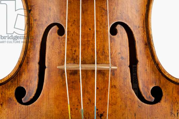 Violin (body), Cremona, 1662