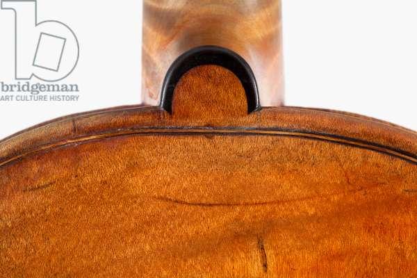 Violin (back), Cremona, 'Habeneck', c.1734