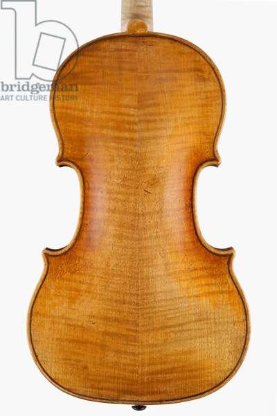 Violin (back), Naples, c.1746