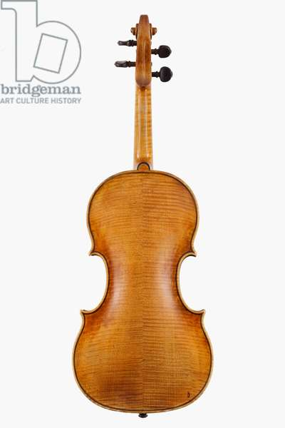 Violin (back), Cremona, 1662