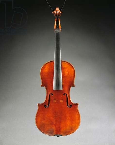 Viola 'Ex Kux'/'Castelbarco' by