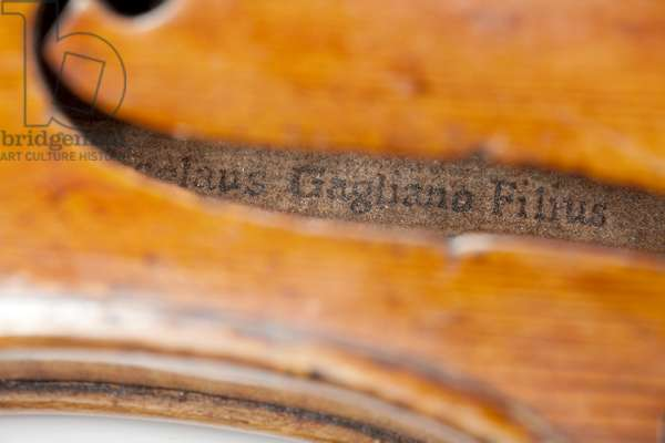 Violin (label viewed through the f-hole), Naples, c.1746