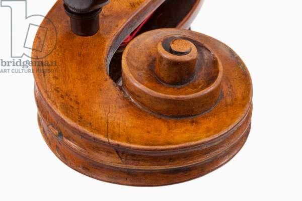 Cello by Giovanni Francesco Celoniatus