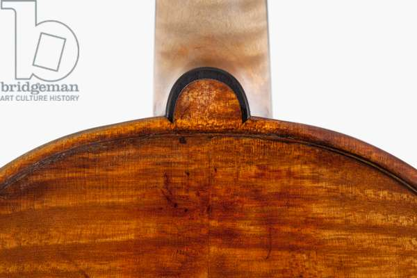 Violin (back top), Cremona, 'Kustendyke', 1699