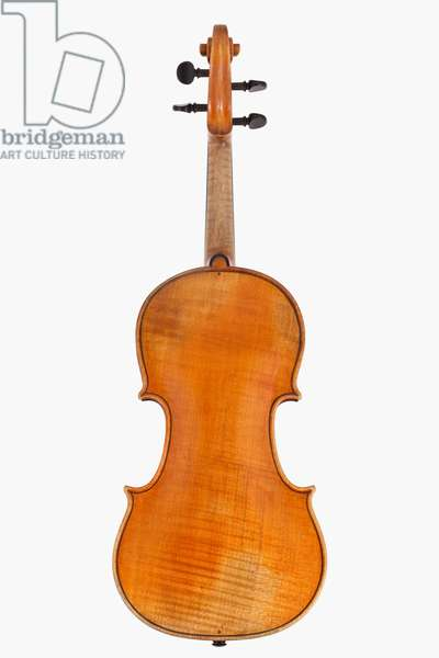 Violin (back), Cremona, 1846