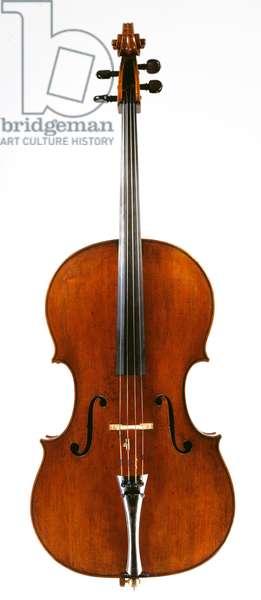 Cello by Francesco Ruggieri