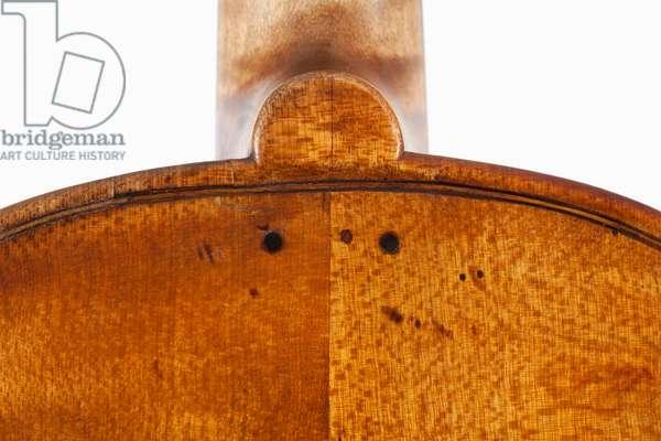 Violin (back upper pins), Treviso, c.1762