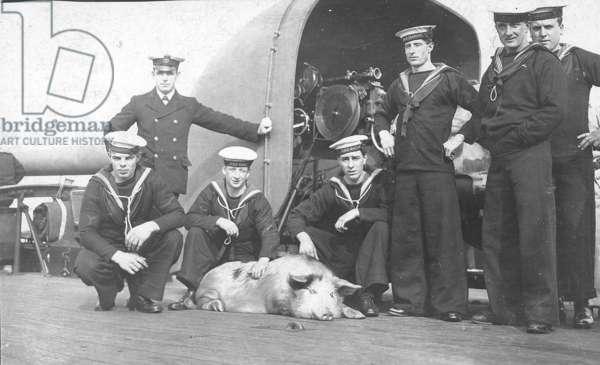Ship's Mascot on HMS Glasgow, c.1920 (b/w photo)