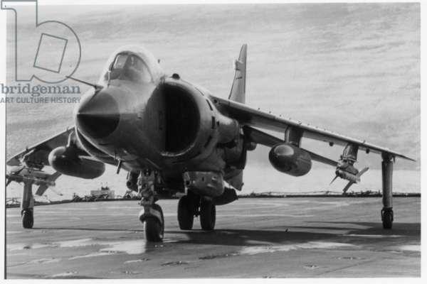 Falklands 233 (b/w photo)