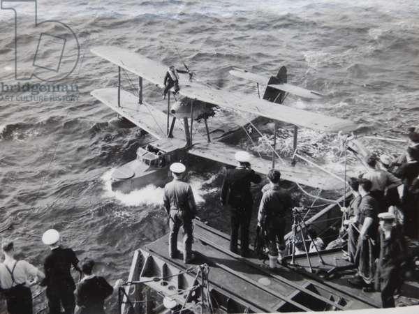 Walrus HMS Bermuda (b/w photo)