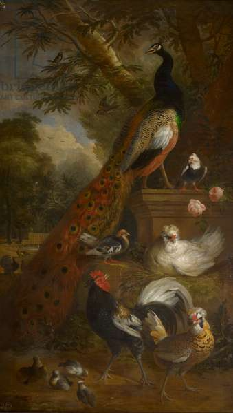 Birds in a landscape, c.1688-1710 (oil on canvas)
