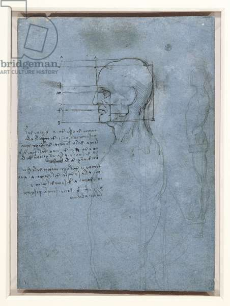 The proportions of the head, and a standing nude, c.1490 (pen & ink and metalpoint on paper)