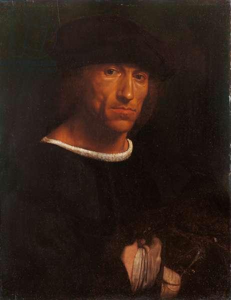 Portrait of a man with a hawk, c.1510-15 (oil on poplar)