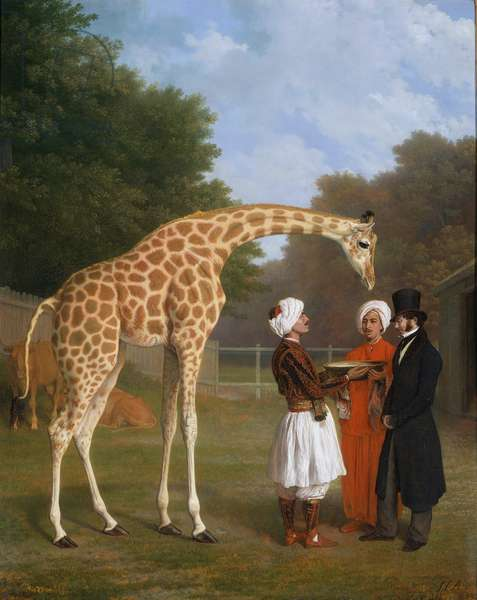 The Nubian Giraffe, 1927 (oil on canvas)