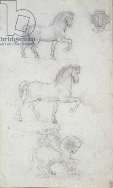 Study for an equestrian monument, c.1517-18 (chalk on paper)
