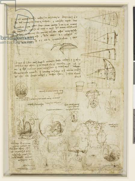 Verso: Studies of emblems, geometrical diagrams, and notes, c.1508-10 (pen & ink on paper)