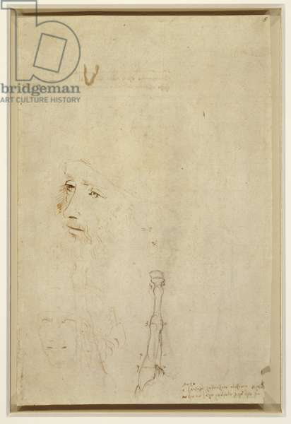 A portrait of Leonardo, a head of a man, and horse' fore-leg, c.1517-18 (pen & ink over chalk on paper)