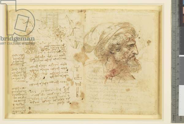 Recto: The bust of a man in profile, studies of intertwined oak, and other studies, c.1510 (pen and ink and wash with traces of red and black chalk on paper) (recto of 5920194)