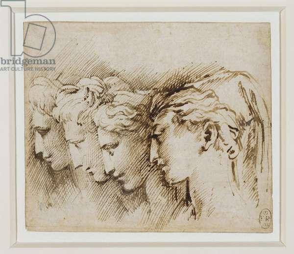 Four women's heads in profile (pen & ink wih wash on paper)