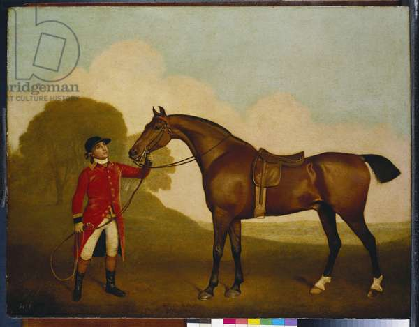 A Bay Horse with a Groom, 1791 (oil on panel)