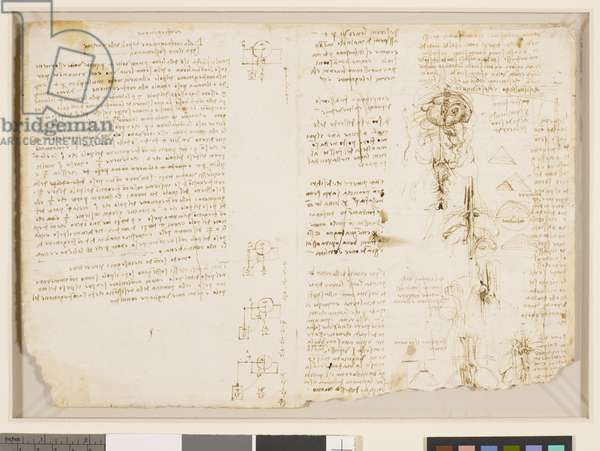 Recto: Studies of mechanics and anatomy, and notes on painting, c. 1510-13 (Pen and ink)