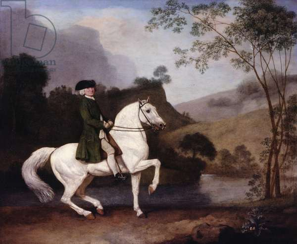 Sir Sidney Medows (1701-92), 1778 (oil on panel)